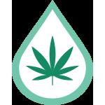 CBD-icon